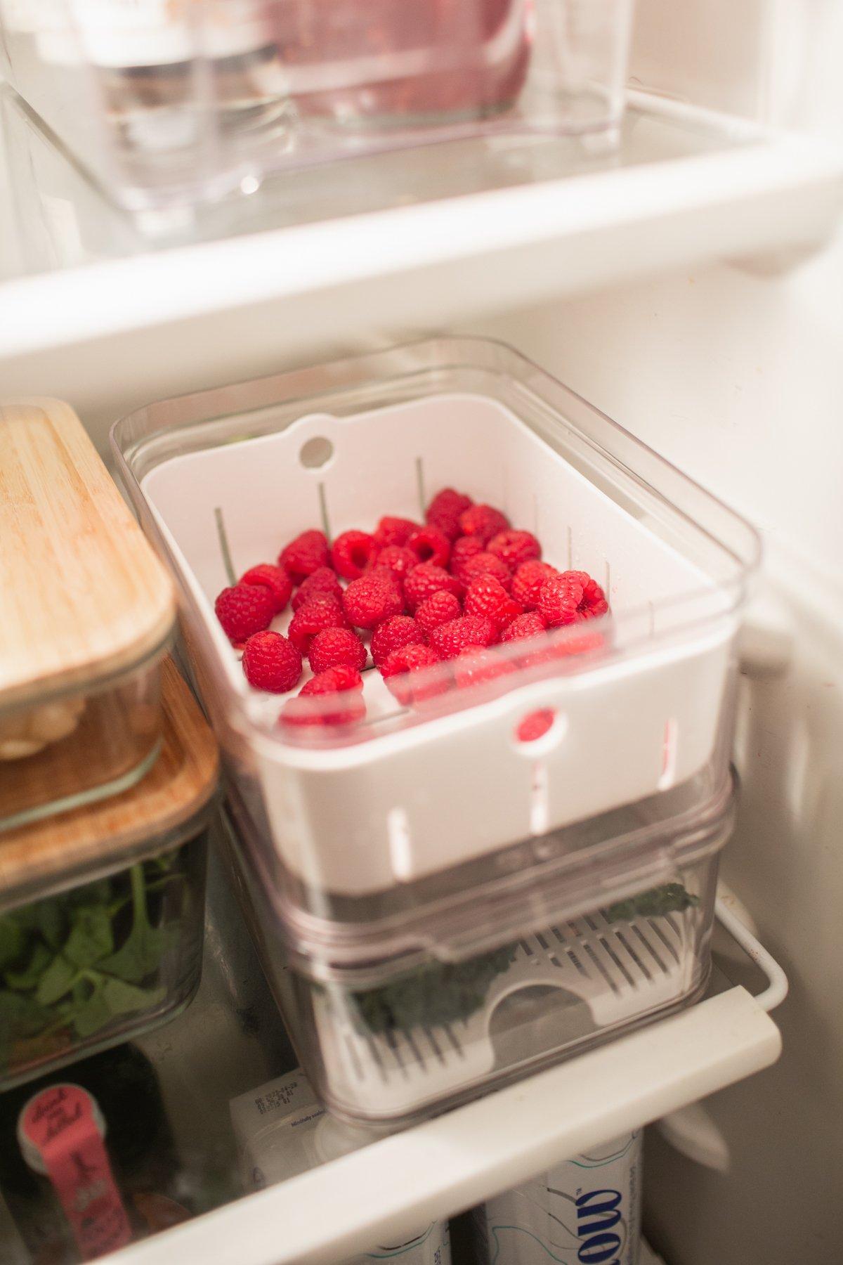 refrigerator berry container